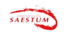 logo-saestum